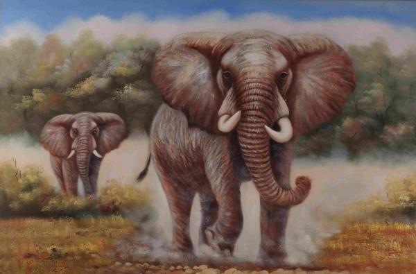 Elefantenbullen