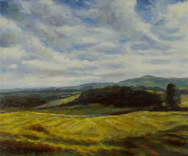 Kornfeld und Hügel