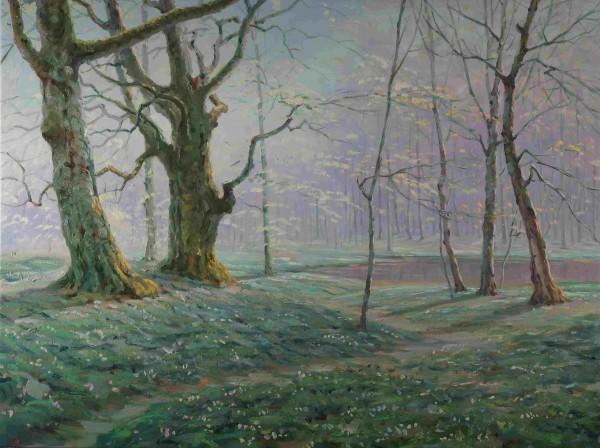 Landschaft mit Bäumen im Frühling